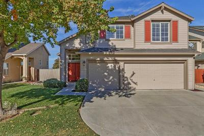 Tracy Single Family Home For Sale: 463 Montclair Lane