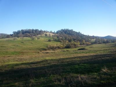 Yuba County Commercial Lots & Land For Sale: 7044 Oat Hills Road
