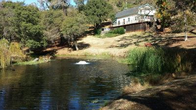 Placer County, Yuba County, Sutter County Single Family Home For Sale: 3055 Fawn Hill Lane