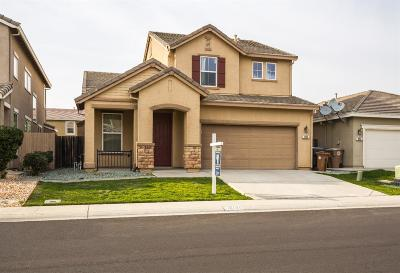 Elk Grove Single Family Home For Sale: 10156 Atkins Drive