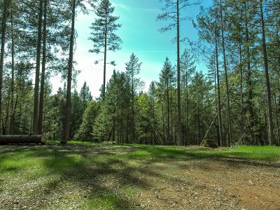 Placer County Residential Lots & Land For Sale: Live Oak Road