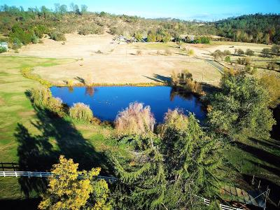 Placer County, Yuba County, Sutter County Single Family Home For Sale: 5990 Bald Mountain Road