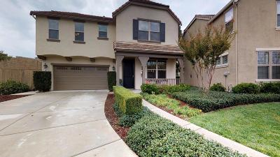 Folsom Single Family Home For Sale: 1671 Ballou Circle