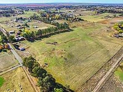 Sacramento County Residential Lots & Land For Sale: 11888 Shawn Lane