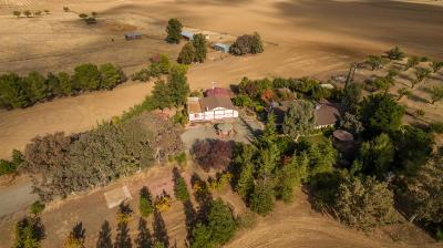 Esparto Single Family Home For Sale: 25520 County Road 25