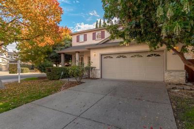 Tracy Single Family Home For Sale: 98 Primrose Court
