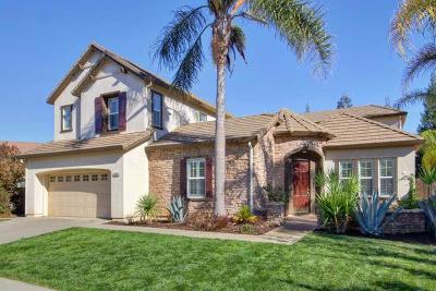 Elk Grove Single Family Home For Sale: 10409 Danichris Way