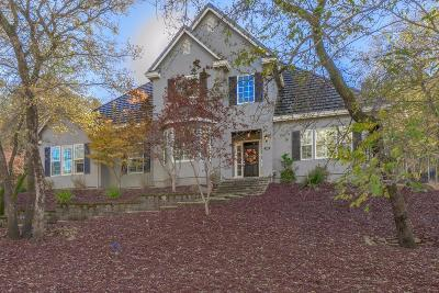 El Dorado Hills Single Family Home For Sale: 1382 Crocker Drive