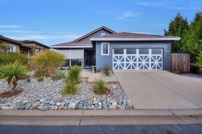 Sutter Creek Single Family Home For Sale: 183 Mesa De Oro