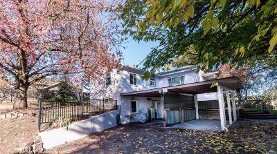 Single Family Home For Sale: 6005 Chestnut Avenue