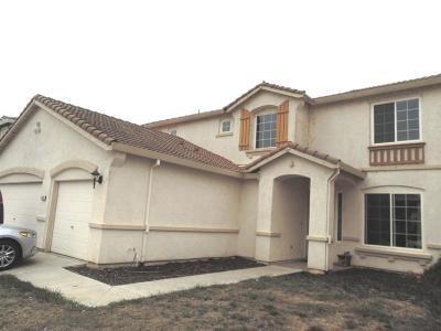 Stockton Single Family Home For Sale: 4133 Mist Trail Drive