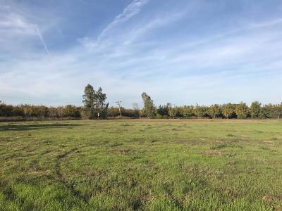 Sutter County Residential Lots & Land For Sale: 160 Lee Road