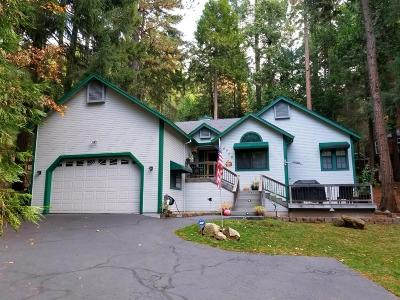 Pollock Pines Single Family Home For Sale: 6726 Topaz Drive