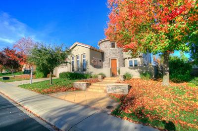 El Dorado Hills Single Family Home For Sale: 1720 Terracina Drive