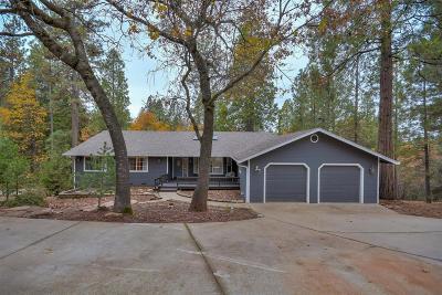Pine Grove Single Family Home For Sale: 12891 Burnt Cedar Lane