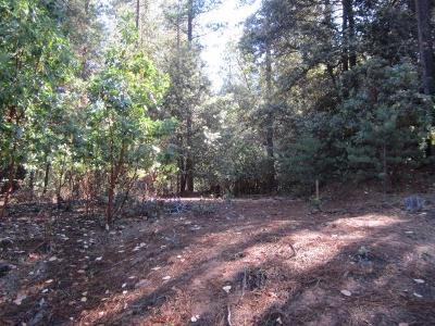Placerville Residential Lots & Land For Sale: 3321 Lupine Lane