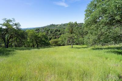Placerville Residential Lots & Land For Sale: Glory View Drive