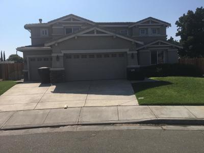 Tracy Single Family Home For Sale: 2056 Shenandoah Drive