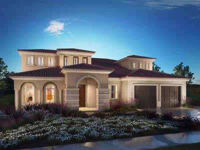 El Dorado Hills Single Family Home For Sale: 4071 Aristotle Drive