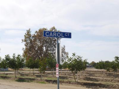 Yuba County Residential Lots & Land For Sale: 7926 Carol Court