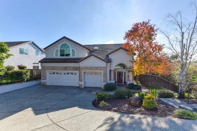 El Dorado Hills Single Family Home For Sale: 1084 Crestline Circle