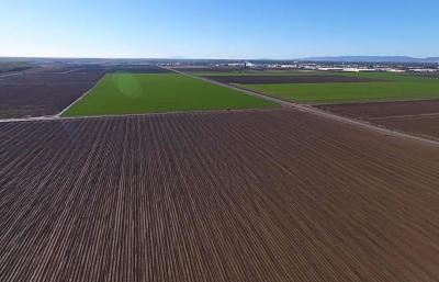 Yolo County Commercial Lots & Land For Sale: County Road 102