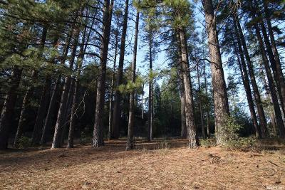 Pine Grove Residential Lots & Land For Sale: 19297 Ridge Road