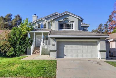 Elk Grove Single Family Home For Sale: 9458 Village Tree Drive