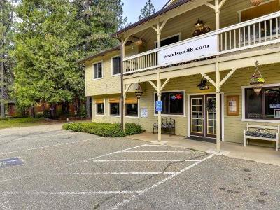 Pioneer Commercial For Sale: 27649 State Highway 88