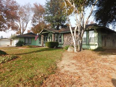 Modesto Single Family Home For Sale: 1601 Sylvan Meadows Drive