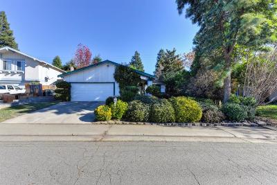 Orangevale Single Family Home For Sale: 6308 Wittenham Way
