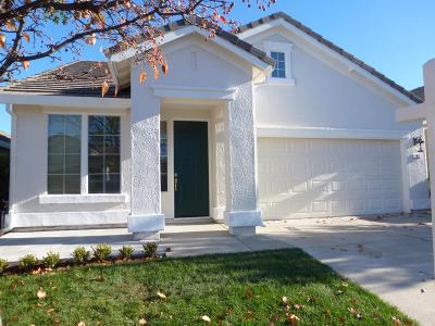 Folsom Single Family Home For Sale: 82 Diggins Drive