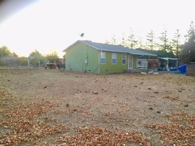 Newman Single Family Home For Sale: 724 Orestimba Road