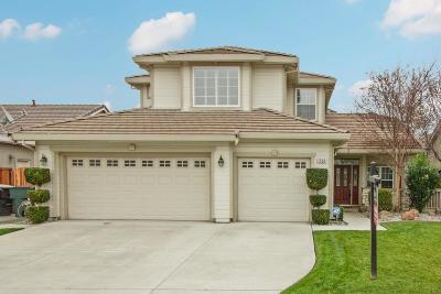 Tracy Single Family Home For Sale: 1586 Arrigotti Lane