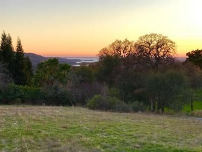 Auburn CA Residential Lots & Land For Sale: $725,000