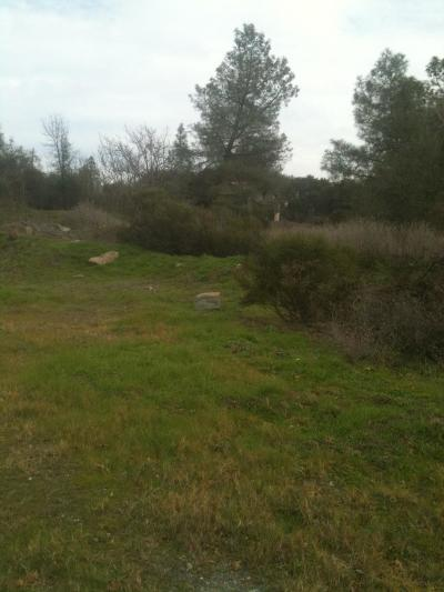 Plymouth Residential Lots & Land For Sale: State Highway 49