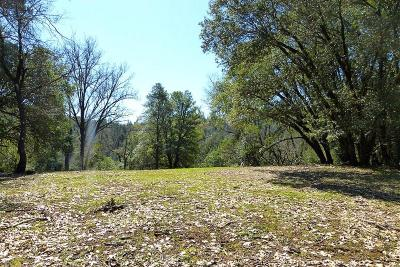 Nevada County Residential Lots & Land For Sale: 15659 Norvin Way