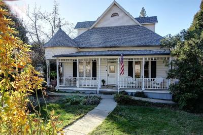 Colfax Single Family Home For Sale: 33 South Auburn Street