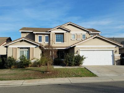 Elk Grove Single Family Home For Sale: 9289 Fox Springs Way