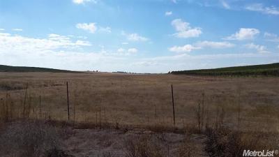 Sacramento County Commercial Lots & Land For Sale: 4 Borden Ranch