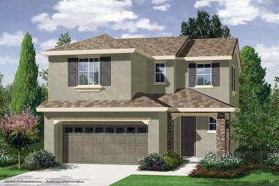 Roseville CA Single Family Home For Sale: $406,900