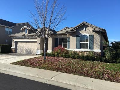 Roseville Single Family Home For Sale: 2281 Ursula Way