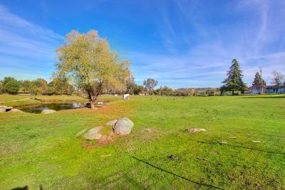 Loomis Residential Lots & Land For Sale: 4651 Val Verde Road