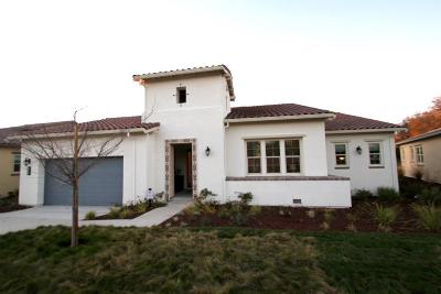 Rancho Murieta Single Family Home For Sale: 14985 Retreats Trail Court