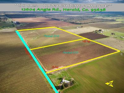 Sacramento County Commercial Lots & Land For Sale: Alabama Road