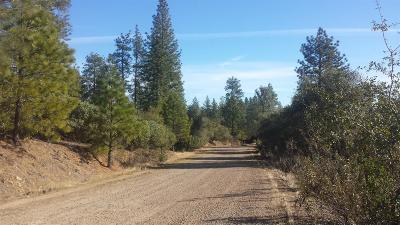 Amador County Residential Lots & Land For Sale: 12377 Twin Pines Road