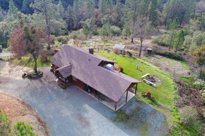 Amador County Single Family Home For Sale: 14609 Shakeridge Road
