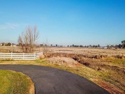 Sacramento County Residential Lots & Land For Sale: Auburn