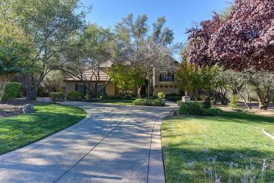 Granite Bay Single Family Home For Sale: 5520 Oakbrooke Court
