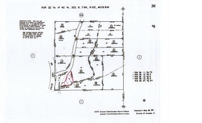 Amador County Residential Lots & Land For Sale: 12405 Contini Mine Road